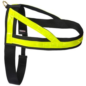 Reflective Search Harness