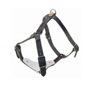 Leather Padded Tracking Harness